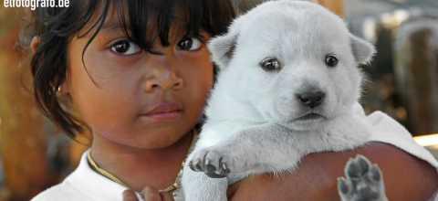 Kind mit Hund auf Bali