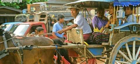 Pferdekutsche in Burma