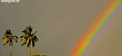 Regenbogen auf Hawaii