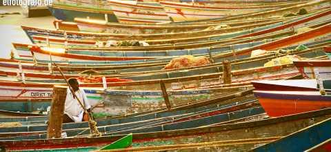 Mann inmitten von Fischerbooten in Indien