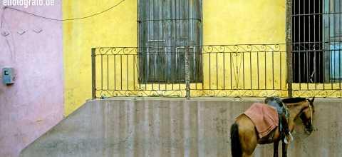 Pferde Parkplatz auf Kuba