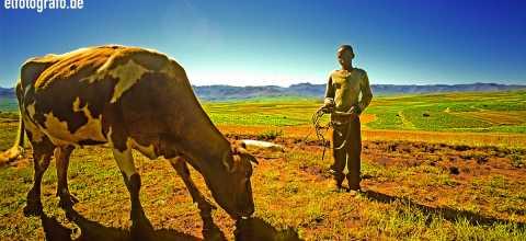Landwirt in Lesotho