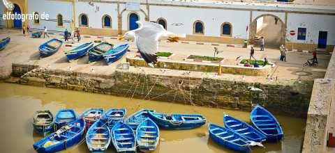 Fischerboote in Marrakech Marokko